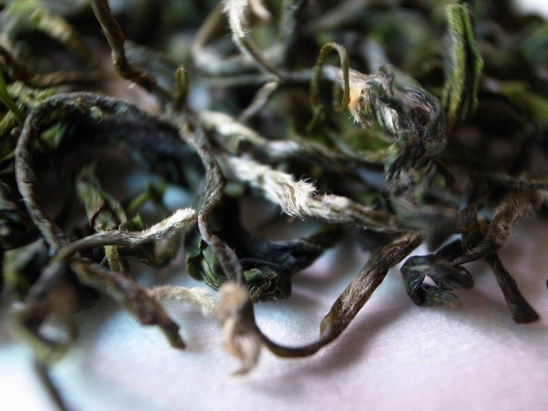 【茶思梵想茶本舖】祖傳茶農親製明前三峽碧螺春綠茶150克