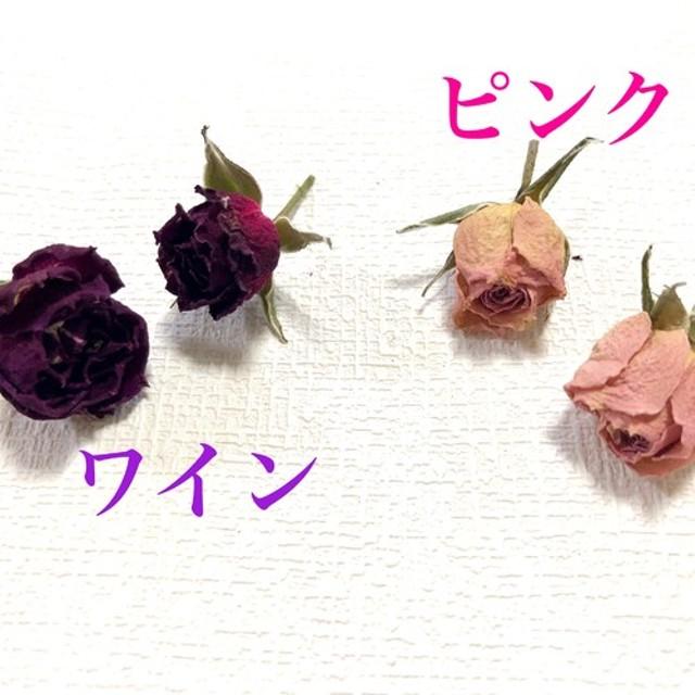【8ケ】ミニバラヘッド、ピンクor ワイン(大地農園、ドライフラワー)