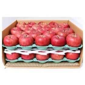 たっぷり10kg! りんご(サンふじ) 46~50玉 「秀品」 小玉サイズ 015-B12