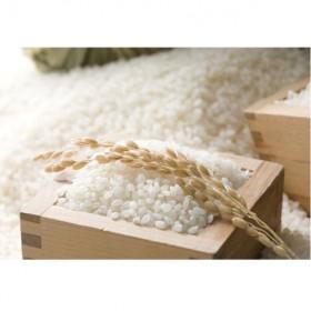 農匠泰山の音信米(おとずれまい)