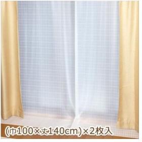抗アレルゲン断熱カーテン 巾100cm×丈140cm 2枚入 ホワイト(W) AL-102 (APIs)