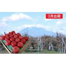 3月  サンふじりんご特A約5kg 糖度13度以上平川市産(14~20玉)