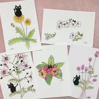 黒猫お花シリーズ ポストカード5枚セット