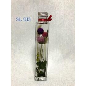 今、大人気のハーバリウム 植物標本 SL-013