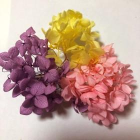 ハーバリウム花材紫陽花