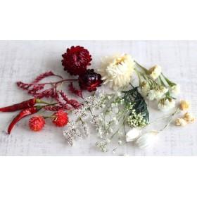 赤と白の花材 (ハーバリウム・ボタニカルキャンドル用素材)