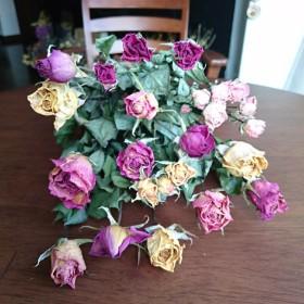 ドライフラワーB35 薔薇15本‼