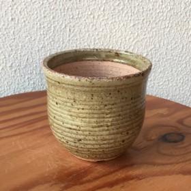 ぐるぐる植木鉢