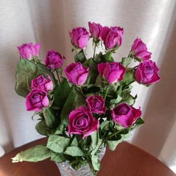 ドライフラワー薔薇15本‼ B192