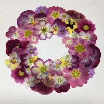 天然押し花素材 72