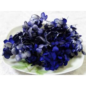 アナベル紫陽花 あじさい アジサイ プリザーブド スプラッシュエジプシアン
