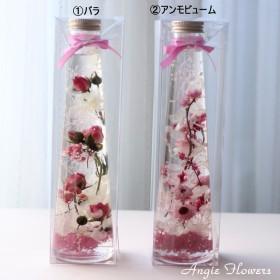 ケース付甘いピンクハーバリウム バラとアンモビューム選択 Lボトル