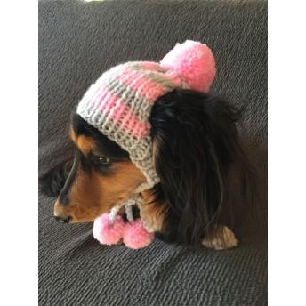 犬用ニット帽