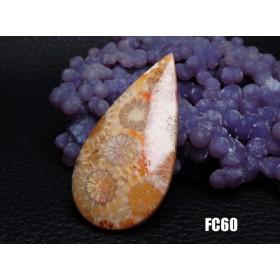 ★ハイグレード★珊瑚の化石 フォッシルコーラル ルース カボション 44mm FC60