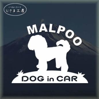 マルプーの白色ステッカードッグインカ―(色変更可です)