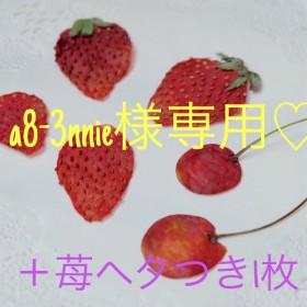 送料無料!さくらんぼとイチゴの押しフルーツ 押し花セット
