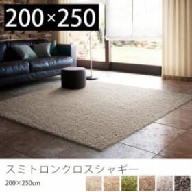 ラグマット おしゃれ 北欧 シャギーラグ ラグ カーペット 絨毯 防ダニ 長方形 日本製 スミトロンクロスシャギー 200×250 リビング 夏用