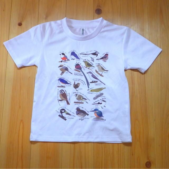 〈キッズサイズ〉野鳥ききなしドライTシャツ