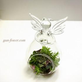 天使のガラス花器サキュレント寄せ植え(ギャザリング) ぐんぐんフラワー神戸