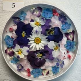 ドライフラワー 花材5 アジサイ初夏セット