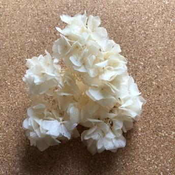 プリザーブドフラワー紫陽花 ホワイト3g