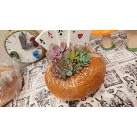 モルタルパン鉢ヴァイツェンソルト