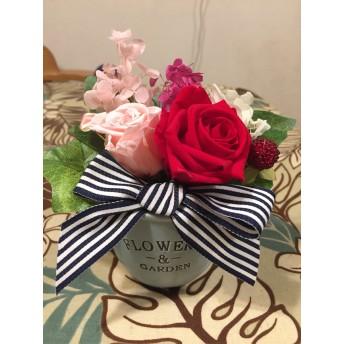 赤い薔薇とピンクのブリザード