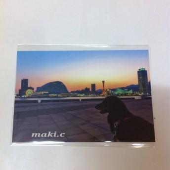 【送料込み300円】ポストカード17