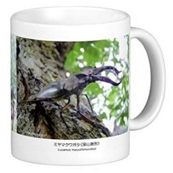 ミヤマクワガタのマグカップ:フォトマグ(世界の昆虫シリーズ)