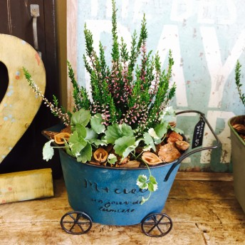 再々販ラスト 【カルーナ&グレコマ】おしゃれなガーデニング ブルー系ブリキカート鉢♪