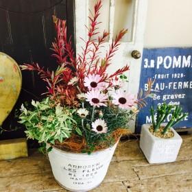 新作 現品のみ【和花入り寄せ植え】素敵なお花のガーデニング♪赤ナチュラルブリキ鉢