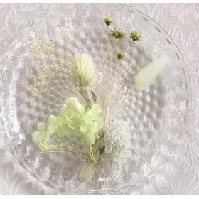 再お値下げしました ️ハーバリウム キャンドル用 花材 ソフトグリーン