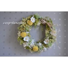 陽だまりの春wreath