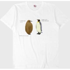 Tシャツ ペンギンの親子