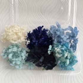 プリザーブド アジサイ ヘッド あじさい 紫陽花 ブルー系 ミックス ハーバリウム
