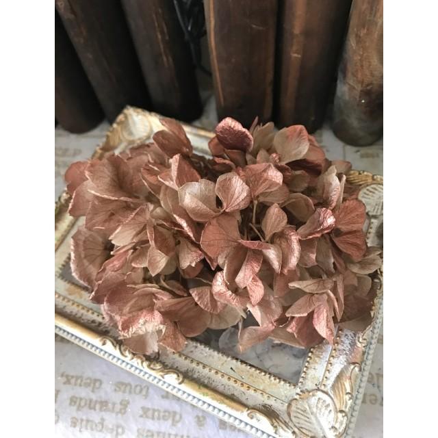 大地農園セイヨウアレンジ加工紫陽花小分け ️シャンパンカッパーグラデーション ️ハーバリウム花材プリザーブドフラワー