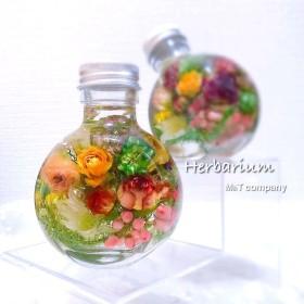 ミニバラのナチュラルハーバリウム Boule de roses