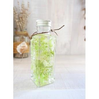 植物ノ瓶詰メ標本Collection グラスグリーン:ショート(ハーバリウム)