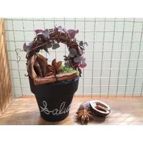 レディー のトピアリー♪ 〜黒板ペイント鉢〜