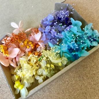 ハーバリウムボールペン*レジン用4カラー花材セット