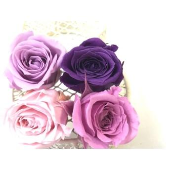 ププリザ バラ(ビビアン) カラーアソート、ピンク/パープルミックス4色アソート