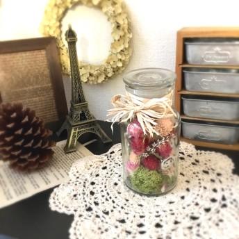 千日紅のクリスマスボトル 〜 Bottle Flower 〜