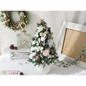 ヒムロスギのホワイトクリスマスツリー
