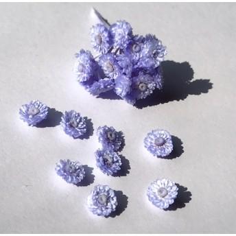 【プラスチックケース入 約45個】ブルーパープル ハーバリウムやレジンに