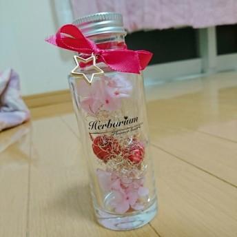 01G ハーバリウム ピンク プリンセス お姫様ver.100ml
