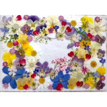 お花色々アソートセット
