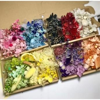 全カラー集合しましたハーバリウム花材セット
