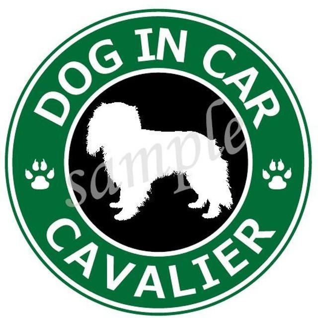 犬 (キャバリア)防水ステッカー 車用