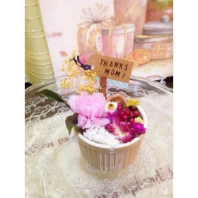 【last1】flower cup pink mother's day!