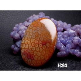 ★ハイグレード★珊瑚の化石 フォッシルコーラル ルース カボション 43mm FC94